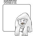 Color White and Polar Bear Cartoon vector image