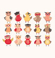 collection of cute colorful owls decorated with vector image