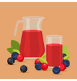 Red juice vector image