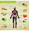 Products useful for the body Healthy eating vector image