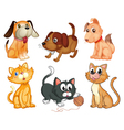Lovable pets vector image