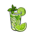 lime quarter and glass of juice mojito cocktail vector image