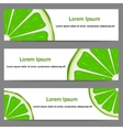 Set of banners with oranges vector image