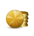 Stack of golden coins vector image