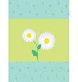 daisies vector image vector image