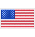 of the usa flag vector image vector image