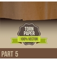 Collection of white torn paper vector image