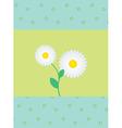 daisies vector image