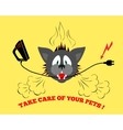 Cats head bite electrical wire cable Care of vector image