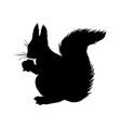 squirrel silhouette black white icon vector image