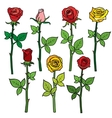 Red roses with flower buds isolated on vector image