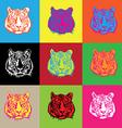 tiger pop vector image