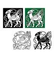 Celtic deer vector image