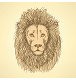Sketch cute lion in vintage style vector image