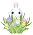 Easter Bunny with crocus bouquet vector image