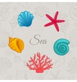 Set of colorful seashells with seamless pattern vector image
