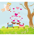 Cute dogs in love vector image
