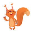 222squirrel vector image