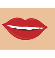 women lips vector image