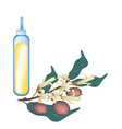 Yellow Dipterocarpaceae Flower with Essential Oil vector image