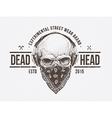 Dead Head vector image vector image