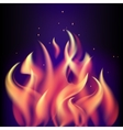 Red burning fire flame on black purple background vector image