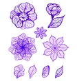 Set of ink isolated colorful flowers vector image
