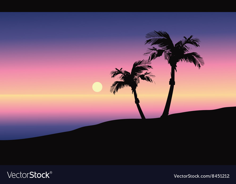 At morning silhouette in beach vector