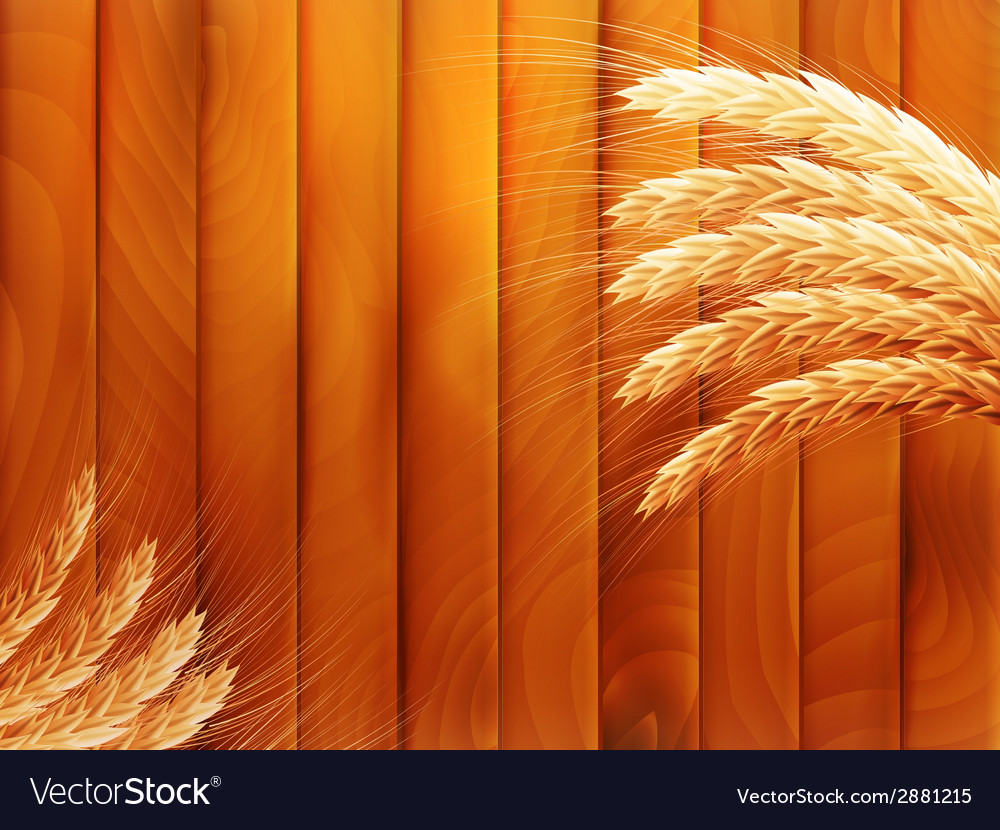 Wheat on wooden autumn background eps 10 vector