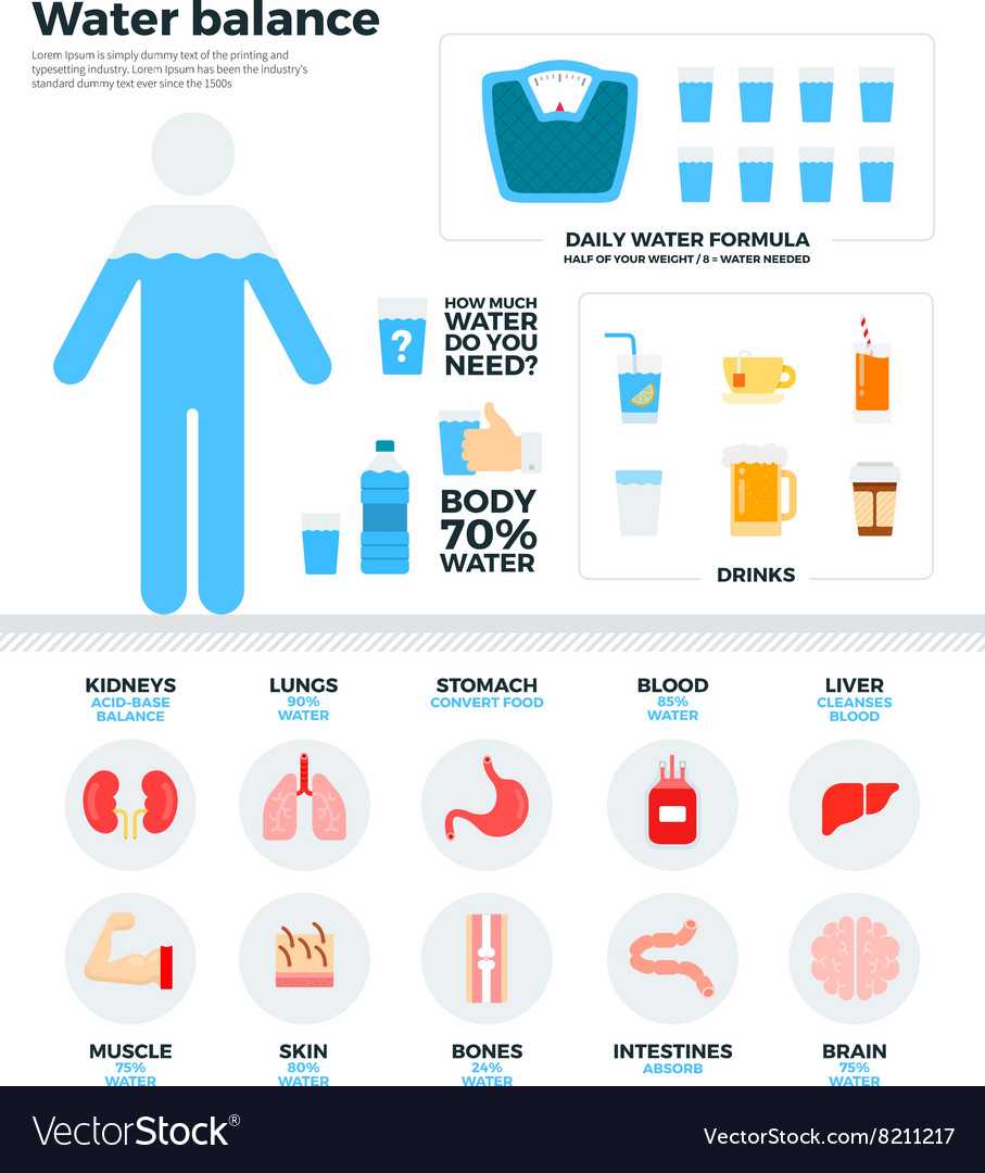 Human water balance health concept vector