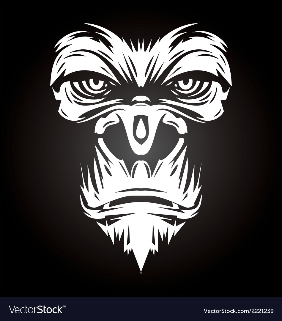 White gorilla face vector