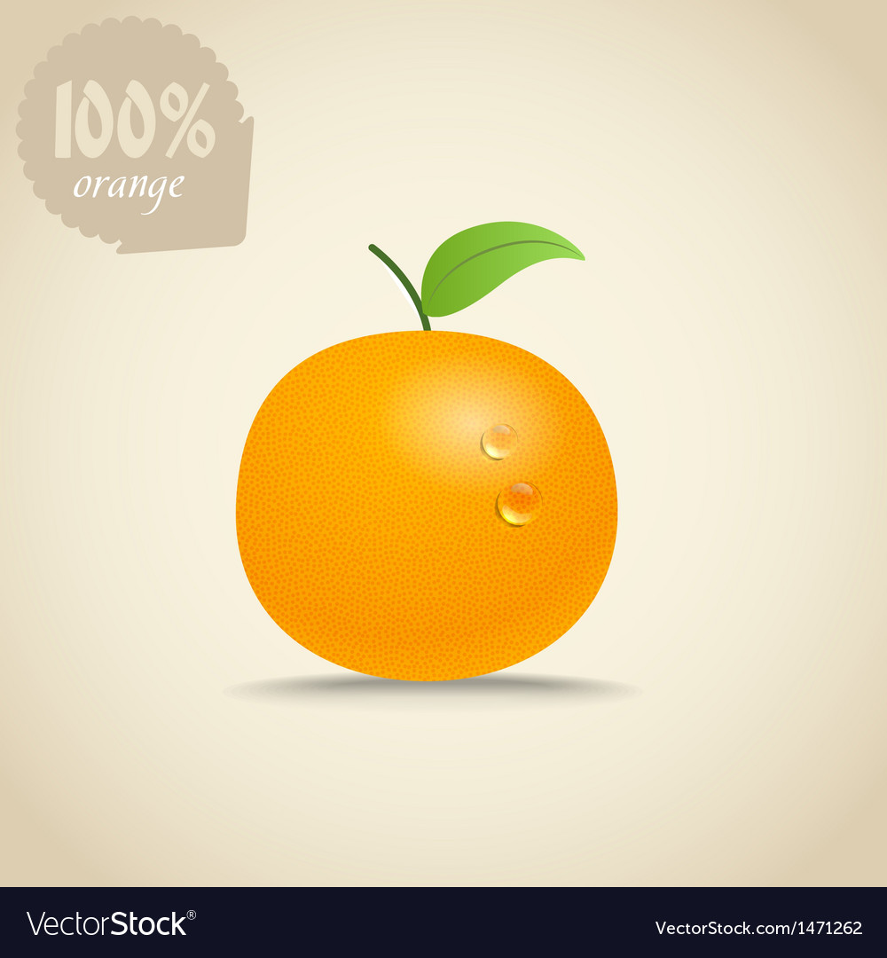 Cute fresh orange vector