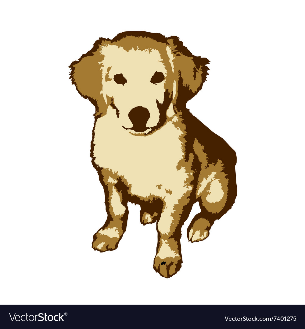 Fun and cute little dog golden retriever vector