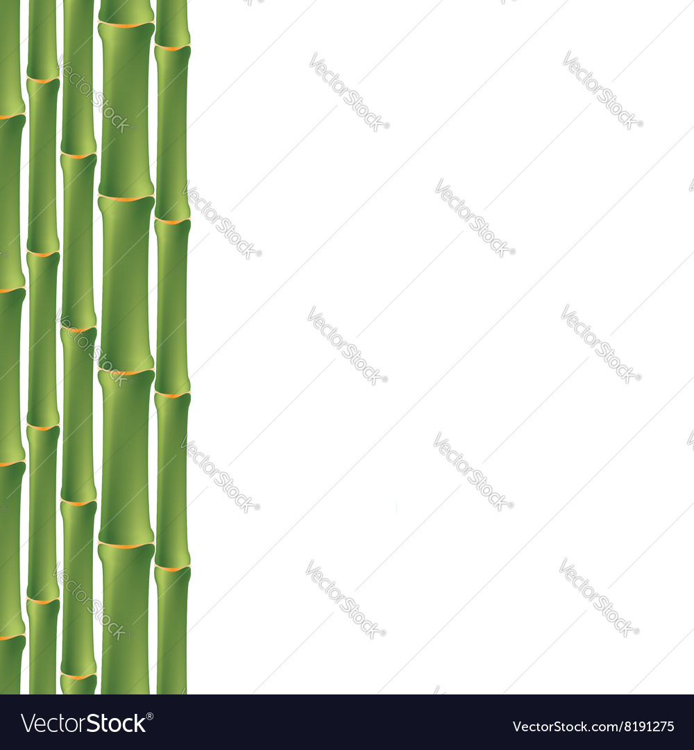 Seamless background with green bamboo vector