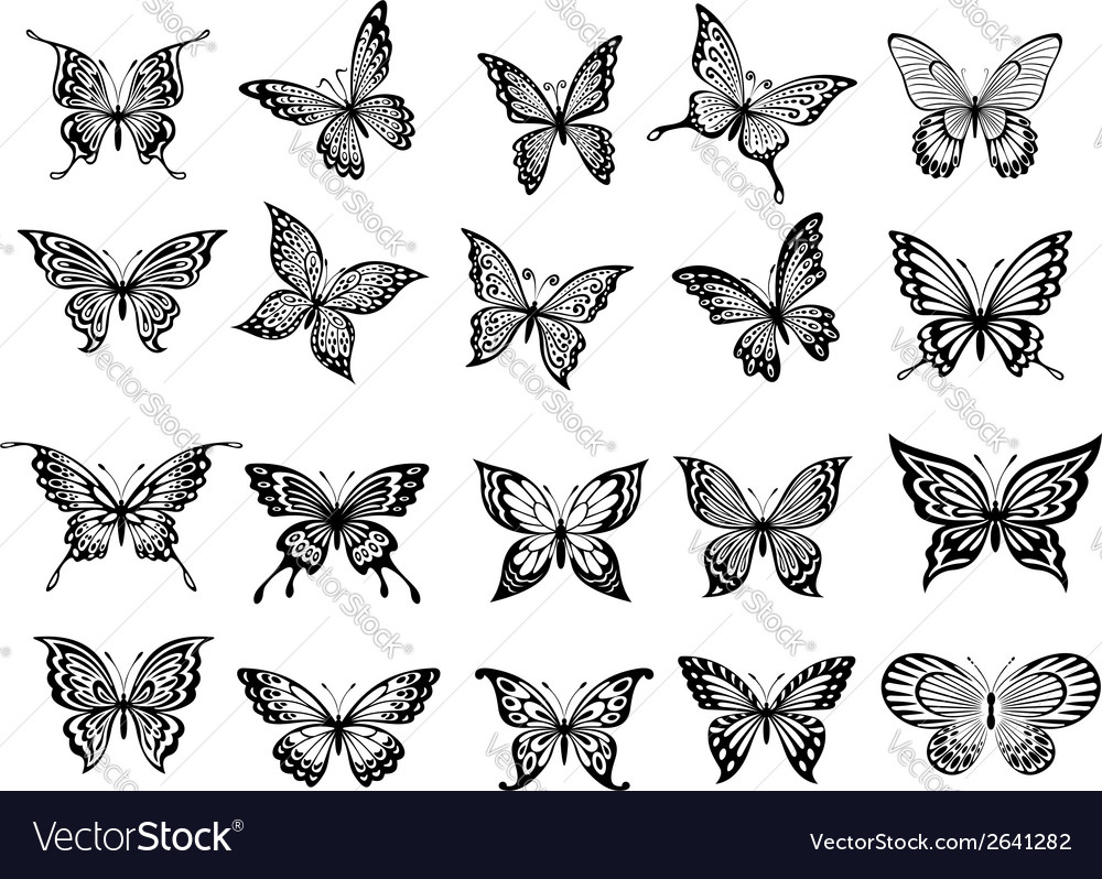 Set of twenty butterflies vector
