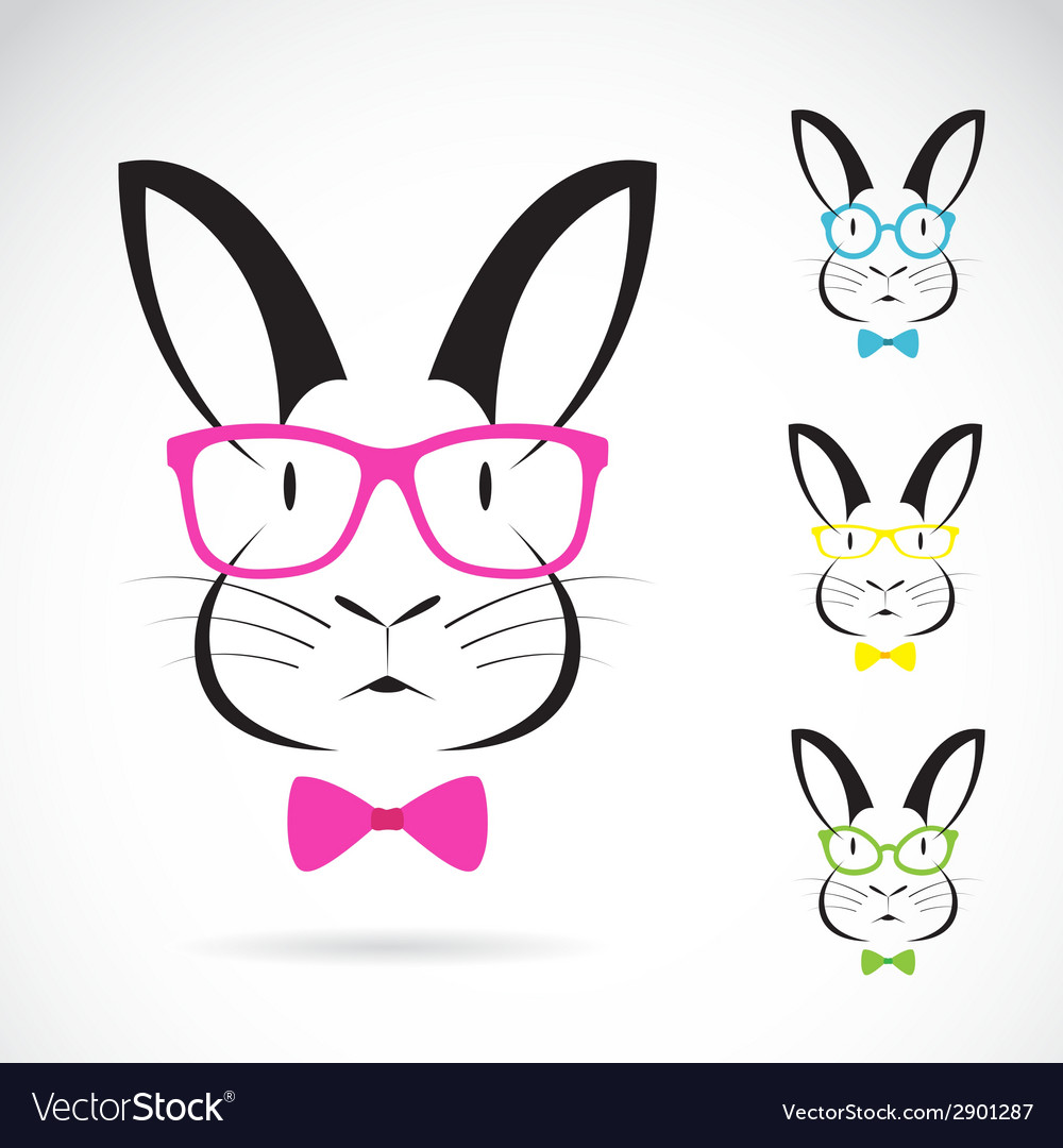 Image of a rabbits wear glasses vector