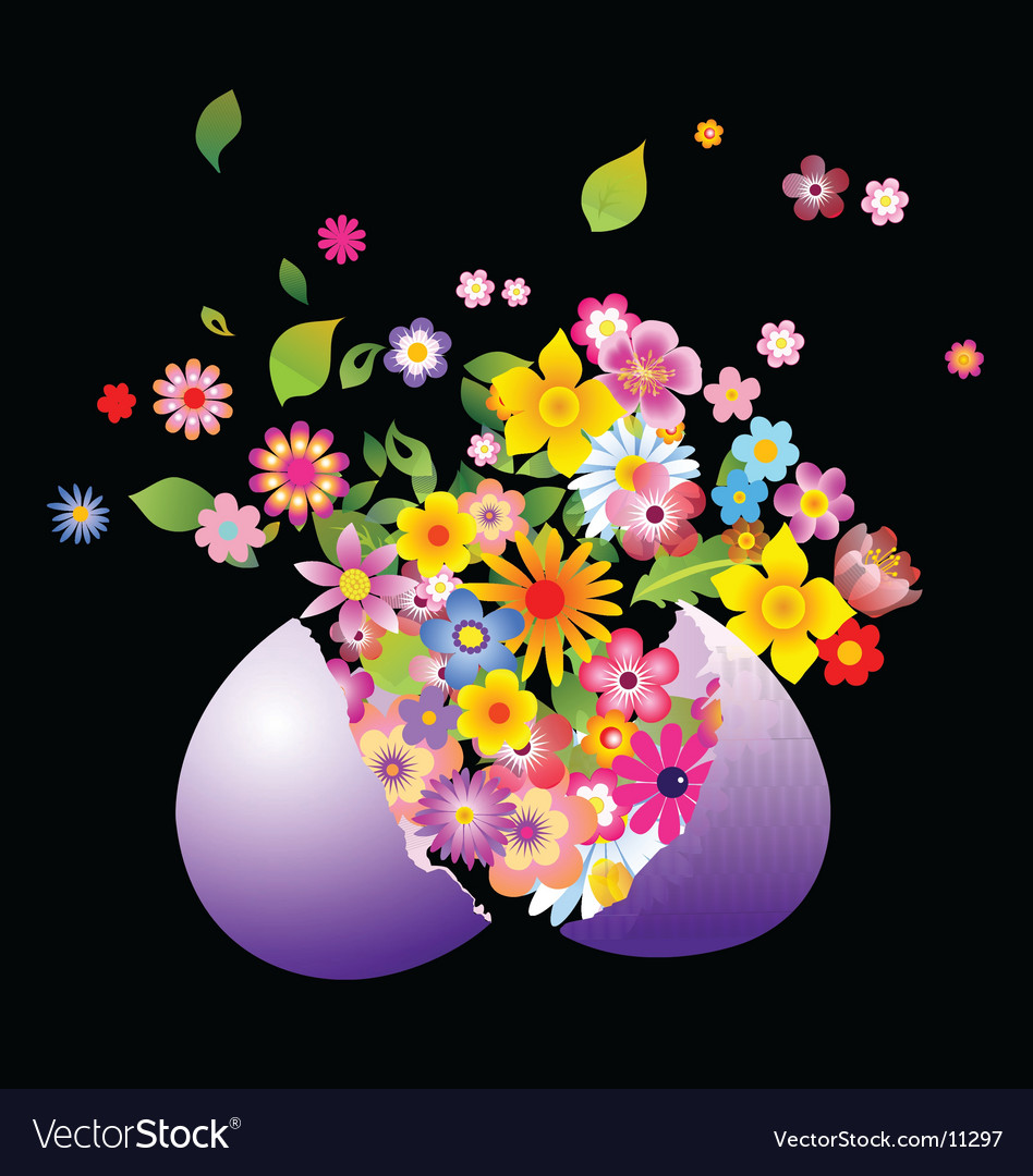 Floral explosion vector