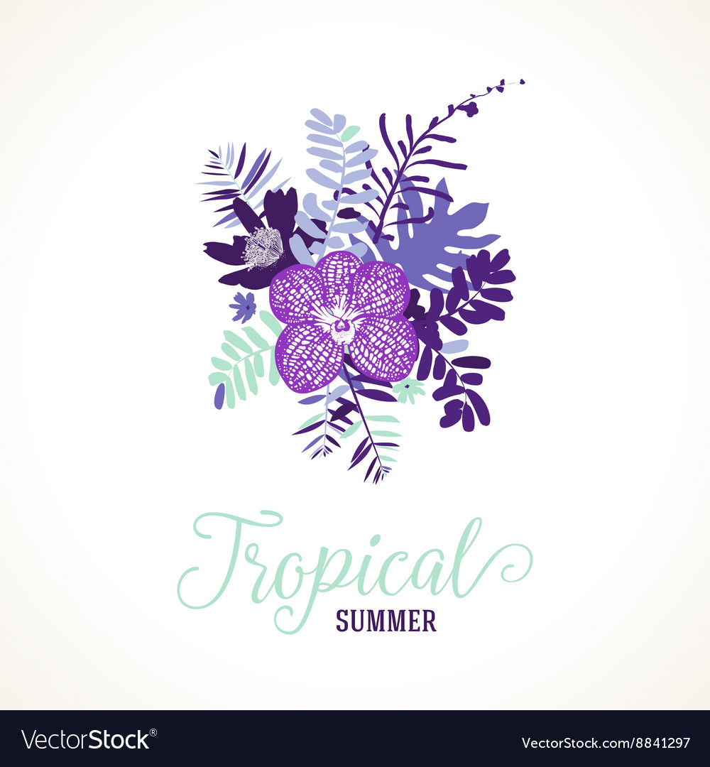 Tropical summer card design vector