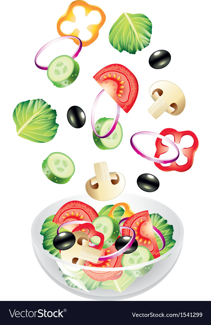 Flying salad vector