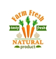 Carrot and garlic Farm fresh vegetable product vector image