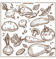 vegetables sketch icons fresh organic vector image