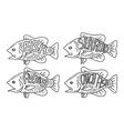 hand drawing fish vector image