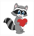 Handsome raccoon holding a heart vector image