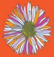Orange camomile print vector image