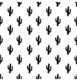 seamless pattern with succulent cactus vector image vector image