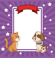 beauty tiger and dog card decoration vector image
