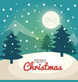 christmas tree pine card vector image