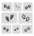icons with traces of animals and birds vector image