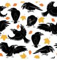Ravens vector image