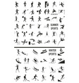 winter and summer sports on the white vector image